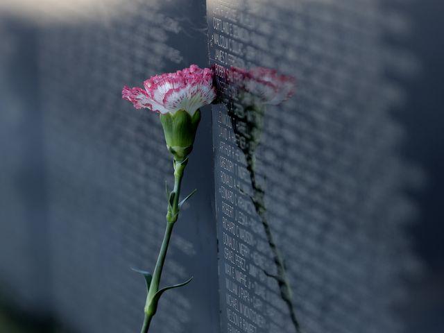 635962476269233657-the-wall-that-heals-6.jpg