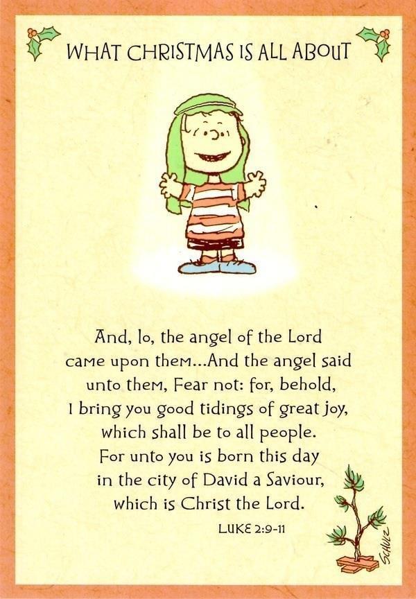 deef462ce1a099d5a96e2c9aa27840d2--peanuts-christmas-christmas-time