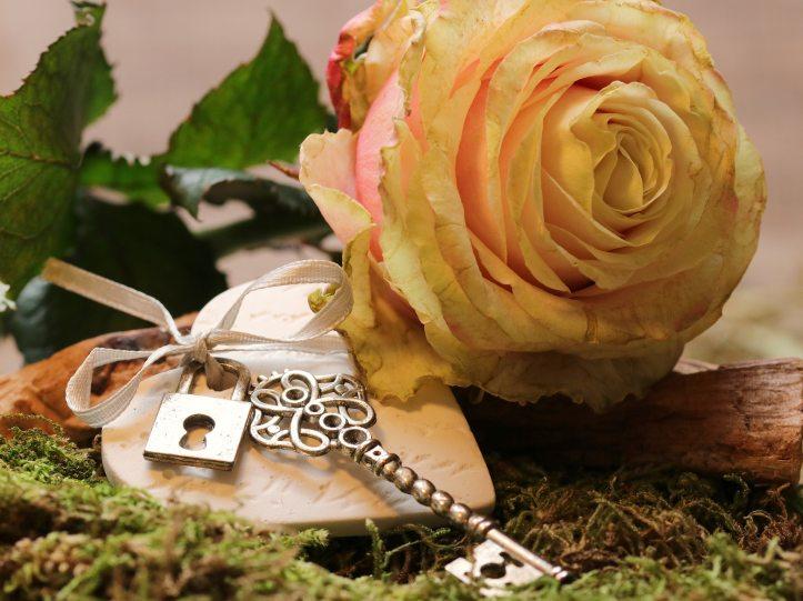 beautiful-beauty-bloom-326185